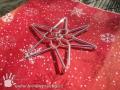 Korálková hvězda