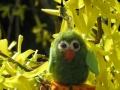 Plstěný ptáček