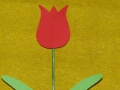 Tulipán na špejli