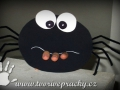 Kousací pavouk