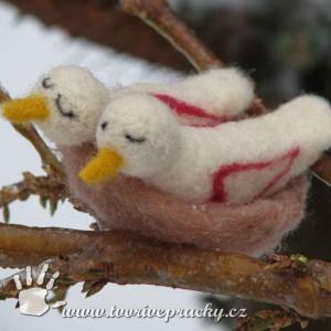 Plstěné ptačí hnízdo