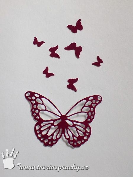 Motýlci na dekoraci hrnečku