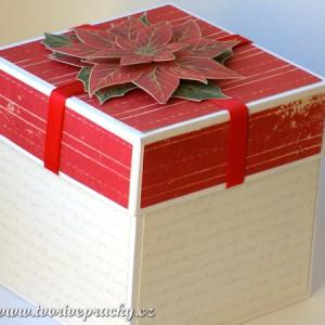 vánoční krabička s cesmínou