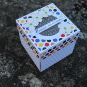 Narozeninová krabička pro muže na darování peněz