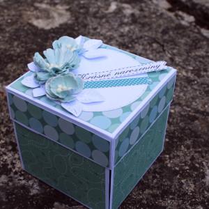 Krabička na darování peněz pro ženu k narozeninám